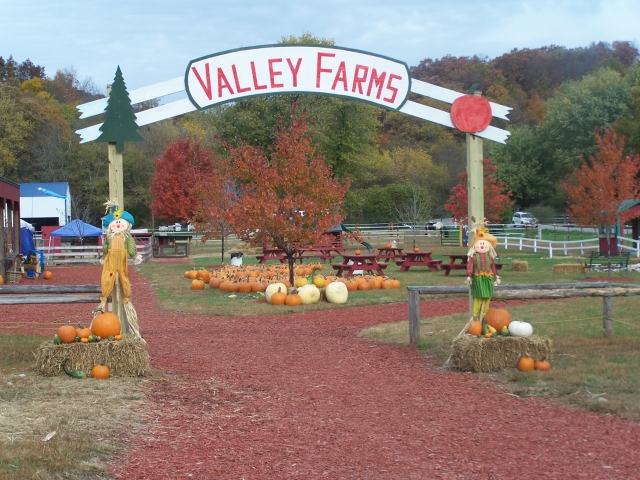 Valley Farms School Outings 5